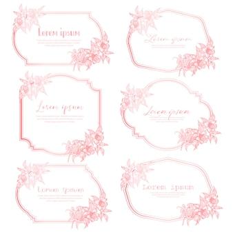 Set di cornice floreale disegnata a mano. cornice geometrica con fiore disegnato a mano, composizione botanica