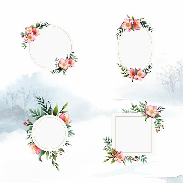 Set di cornici floreali di elleboro dipinte da vettori ad acquerello