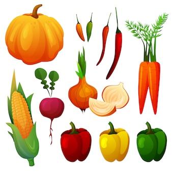 Set di deliziosi colori vegetali vivaci