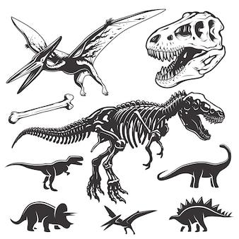 Set di dinosauri monocromatici. elementi di archeologia. teschio e scheletro di t-rex. icone di dinosauri.