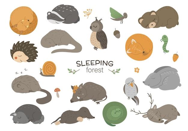 Set di disegnati a mano piatto dormire animali del bosco.