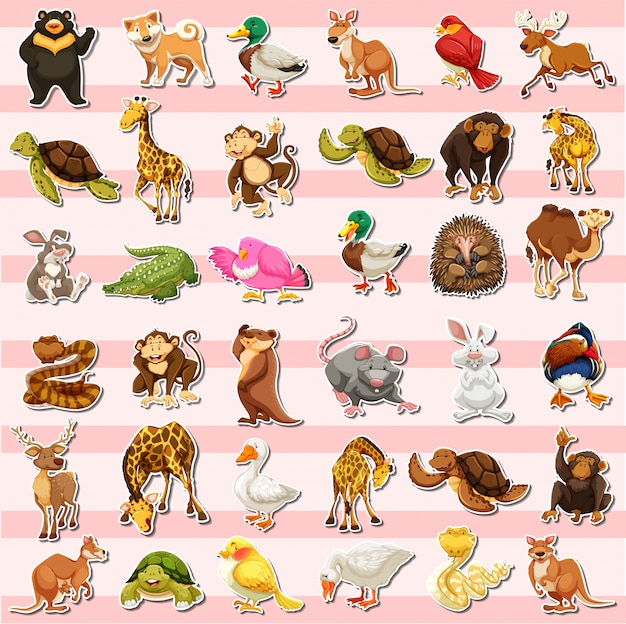Set di diversi adesivi animali