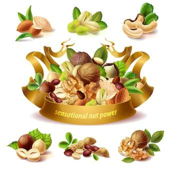 Set di diversi tipi di frutta a guscio, nocciole, arachidi, mandorle, pistacchio, noci, anacardi