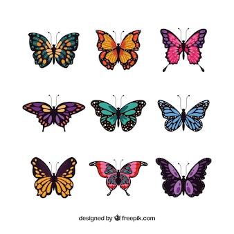 Set di eleganti farfalle