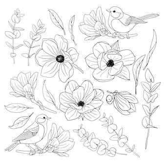 Set di eleganti uccelli di magnolia in fiore con uccelli