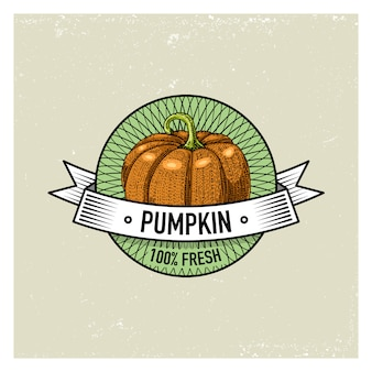 Set di etichette, emblemi o logo vintage di zucca per cibo vegetariano, verdure disegnate a mano o incise. stile retrò fattoria americana.