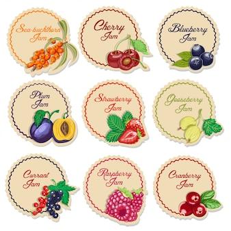 Set di etichette isolate per marmellata da bacche