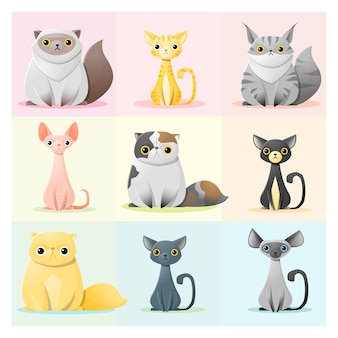 Set di famiglia di gatti