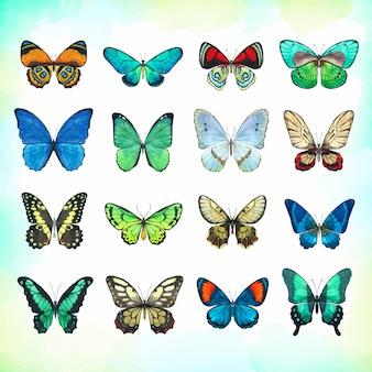 Set di farfalle acquerello