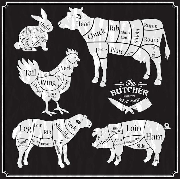 Set di fattoria degli animali. tagliata di manzo, maiale, agnello, pollo.