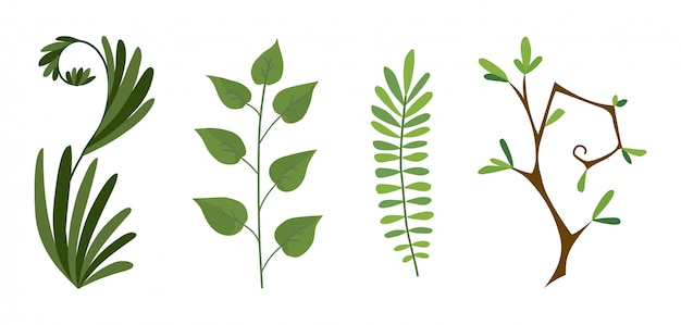 Set di felce foresta verde, ramo di vegetazione verde eucalipto verde arte fogliame naturale