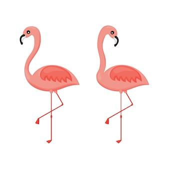 Set di fenicotteri rosa isolato. illustrazione vettoriale.