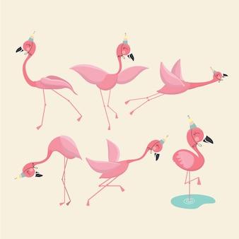 Set di fenicotteri rosa,.