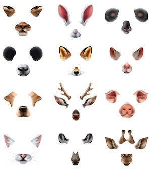 Set di filtri effetto applicazione video chat maschere animali svegli