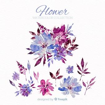 Set di fiori ad acquerelli
