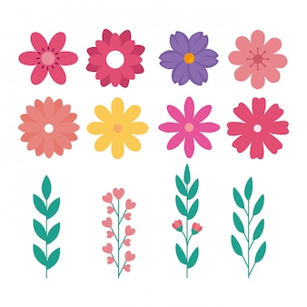 Set di fiori carini con rami e foglie naturali