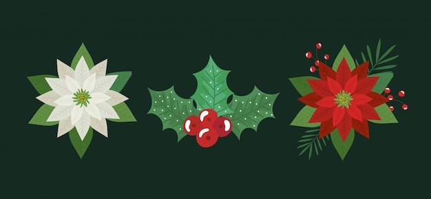 Set di fiori e foglie decorazioni natalizie