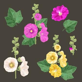 Set di fiori e foglie di malva. estate disegno floreale con fiori.