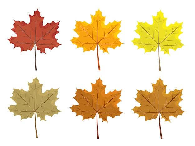 Set di foglie colorate d'autunnali. foglie di stile cartone animato e piatto.