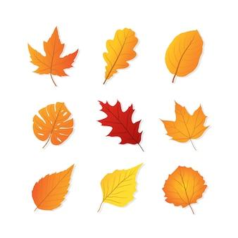 Set di foglie d'autunno