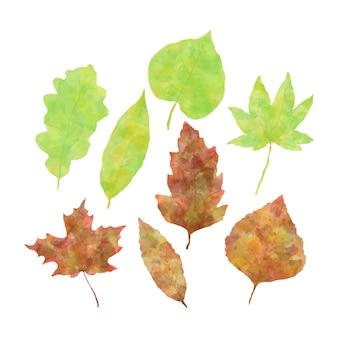 Set di foglie di autunno dell'acquerello