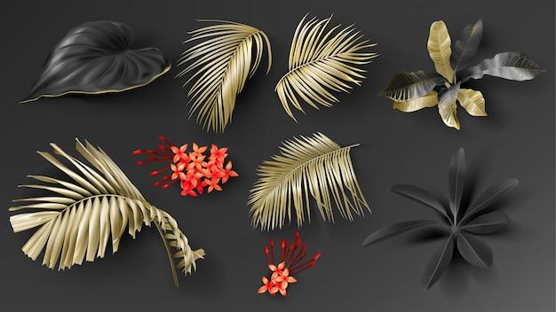 Set di foglie nere e dorate tropicali