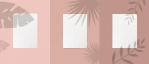 Set di foglio bianco vuoto modello con ombra di foglie, fogliame e rami di piante
