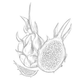 Set di frutta drago rosso isolato su sfondo bianco. intero, metà e fetta.