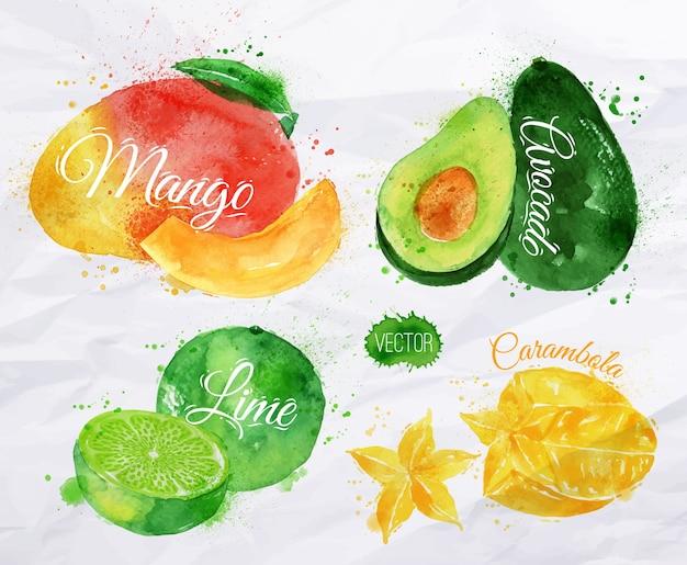 Set di frutta esotica