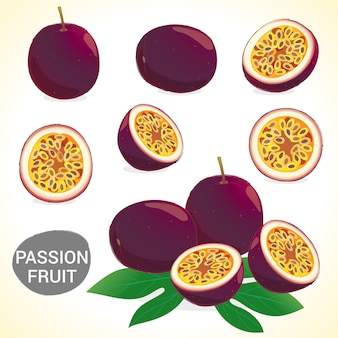 Set di frutto della passione in vari stili di formato vettoriale