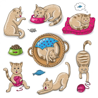 Set di gatti simpatici cartoni animati