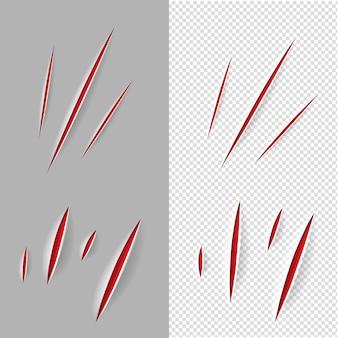 Set di graffi di artigli