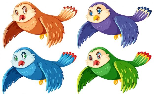 Set di gufi carini colorati