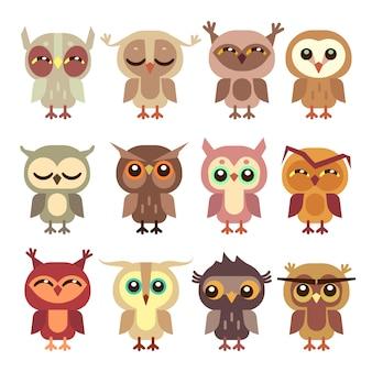 Set di gufi divertenti cartoon. predatore dell'uccello selvaggio, piccola illustrazione di owlet