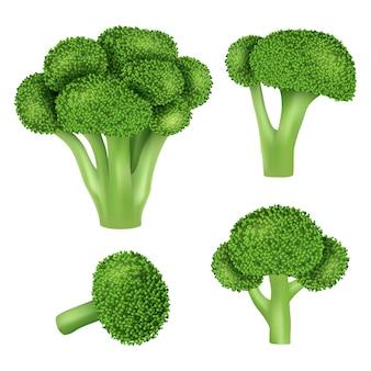 Set di icone di cavolo broccoli