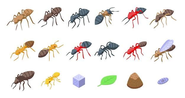 Set di icone di formica