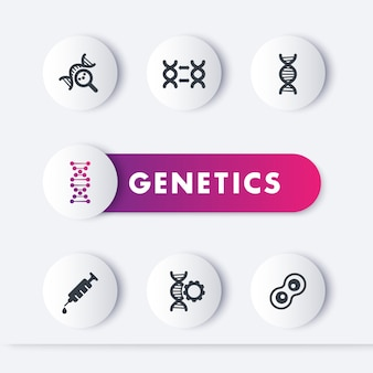 Set di icone di genetica, modificazione genetica