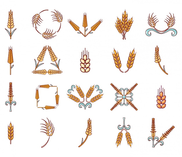 Set di icone di grano. insieme del fumetto della raccolta delle icone di vettore del grano isolata