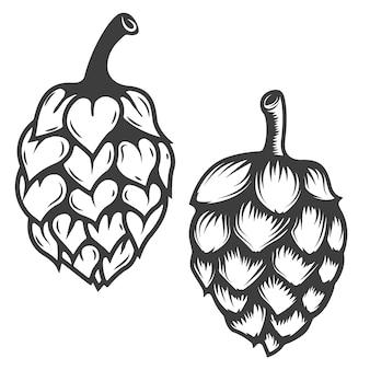 Set di icone di luppolo isolato su sfondo bianco. elementi per logo, etichetta, emblema, segno, marchio. illustrazione.