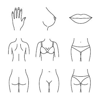 Set di icone di parti del corpo femminile