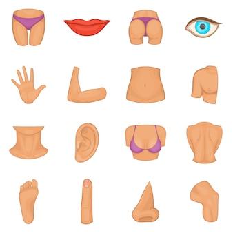 Set di icone di parti del corpo
