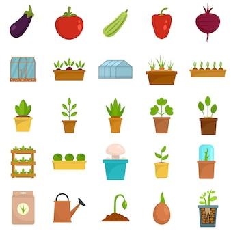 Set di icone di serra
