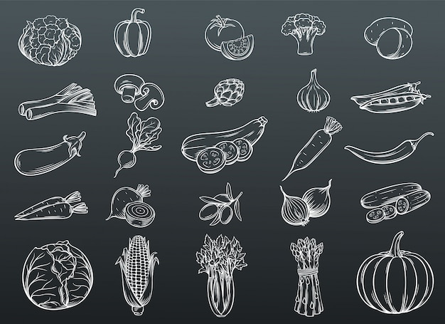 Set di icone disegnate a mano verdure.