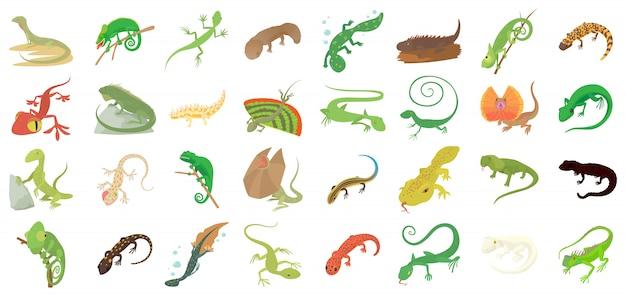 Set di icone lucertola