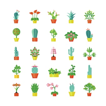 Set di icone piane di piante di casa