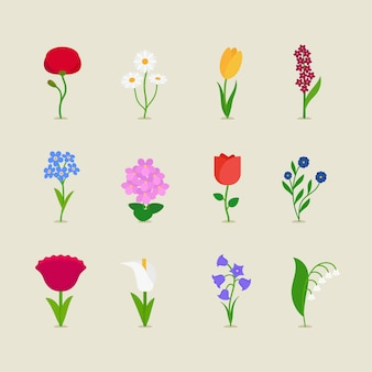 Set di icone stilizzate fiori mod