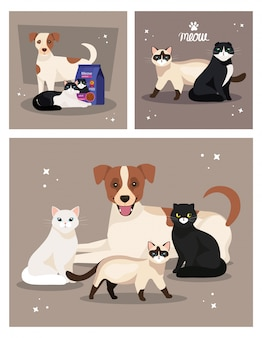 Set di illustrazione di simpatici cani e gatti