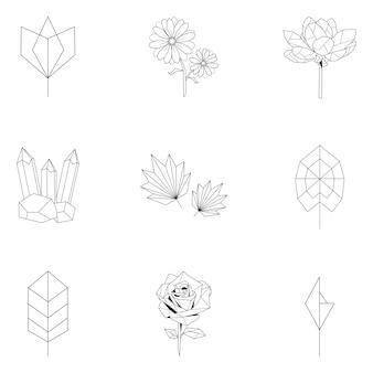 Set di illustrazione lineare natura