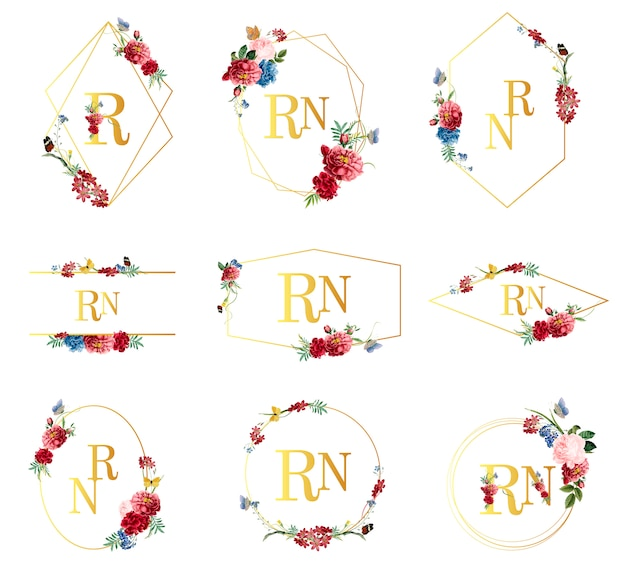 Set di illustrazioni cornice floreale