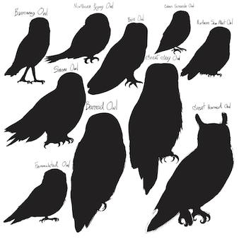 Set di illustrazioni di animali